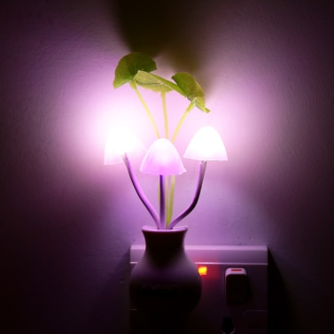 Eingemachte Nachtlicht LED Anlage